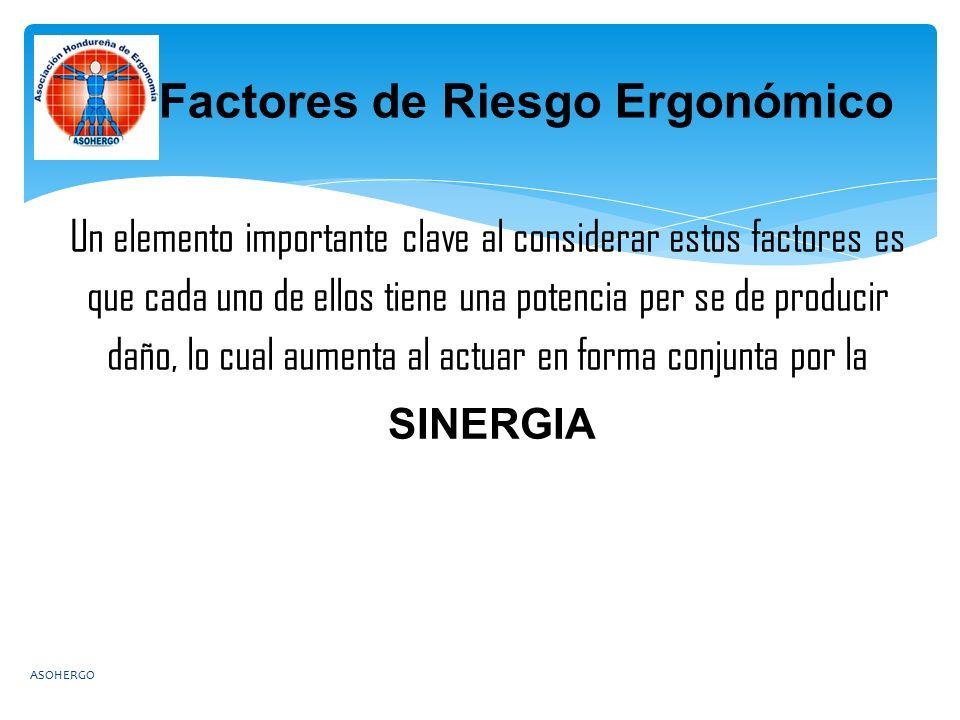 Un elemento importante clave al considerar estos factores es que cada uno de ellos tiene una potencia per se de producir daño, lo cual aumenta al actuar en forma conjunta por la SINERGIA Factores de Riesgo Ergonómico ASOHERGO