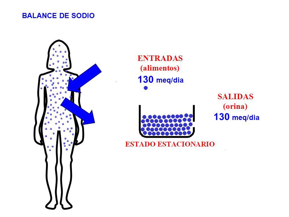ENTRADAS (alimentos) 130 meq/dia SALIDAS (orina) BALANCE DE SODIO 130 meq/dia