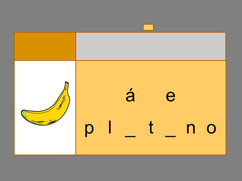 p l _ t_ a á n _o