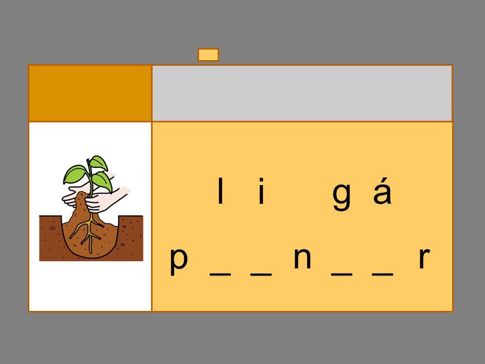 p _ _ n_ a l p á __ r