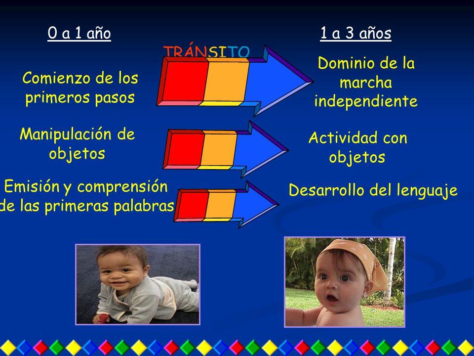 Comienzo de los primeros pasos Dominio de la marcha independiente 1 a 3 años Manipulación de objetos Actividad con objetos 0 a 1 año Emisión y comprensión de las primeras palabras Desarrollo del lenguaje TRÁNSITO