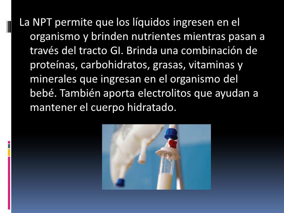 La NPT permite que los líquidos ingresen en el organismo y brinden nutrientes mientras pasan a través del tracto GI.