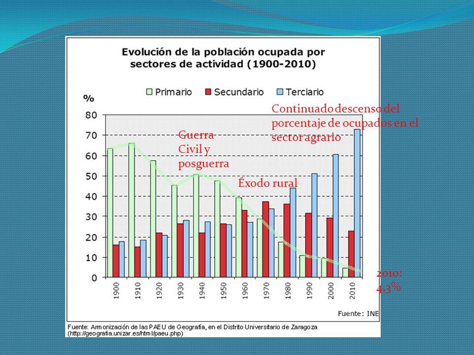 Guerra Civil y posguerra Continuado descenso del porcentaje de ocupados en el sector agrario 2010: 4,3% Éxodo rural