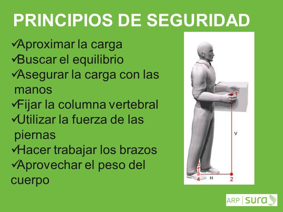 ARP SURA PRINCIPIOS DE SEGURIDAD Aproximar la carga Buscar el equilibrio Asegurar la carga con las manos Fijar la columna vertebral Utilizar la fuerza