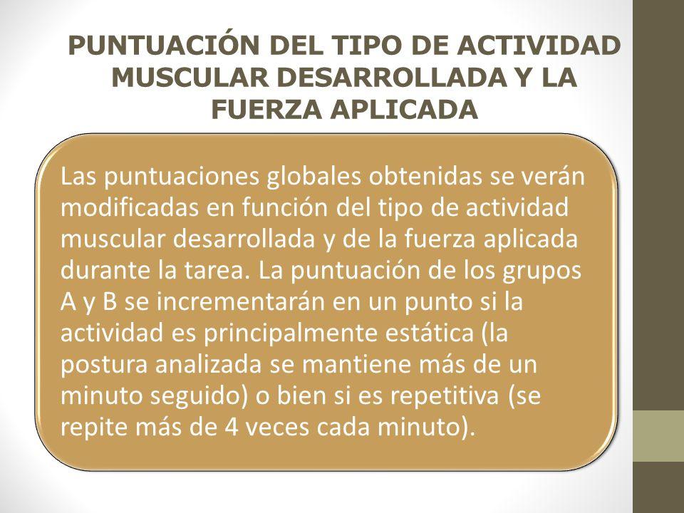 PUNTUACIÓN DEL TIPO DE ACTIVIDAD MUSCULAR DESARROLLADA Y LA FUERZA APLICADA Las puntuaciones globales obtenidas se verán modificadas en función del tipo de actividad muscular desarrollada y de la fuerza aplicada durante la tarea.