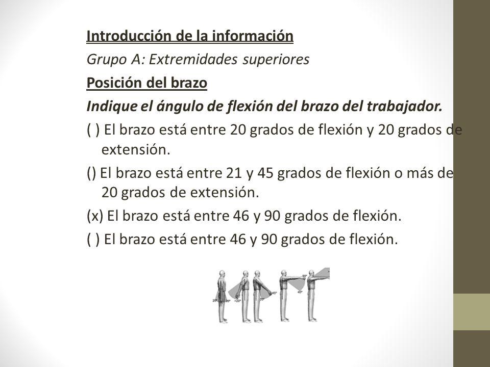 Introducción de la información Grupo A: Extremidades superiores Posición del brazo Indique el ángulo de flexión del brazo del trabajador.