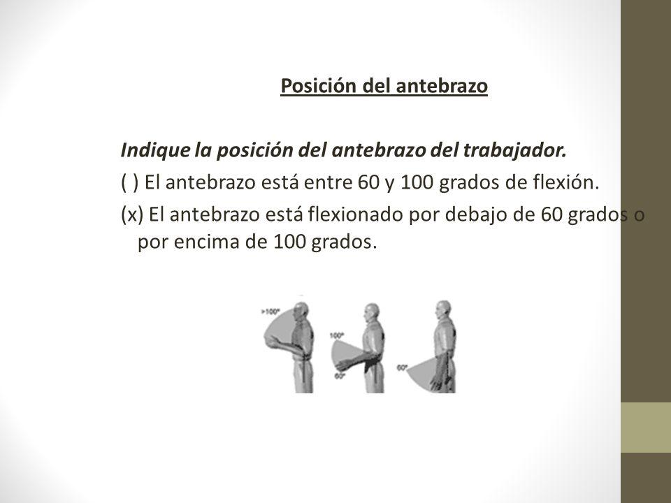 Posición del antebrazo Indique la posición del antebrazo del trabajador.