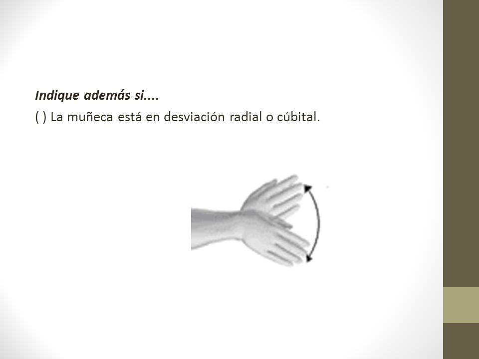 Indique además si.... ( ) La muñeca está en desviación radial o cúbital.