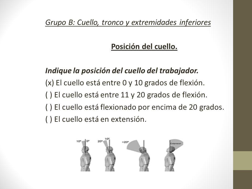 Grupo B: Cuello, tronco y extremidades inferiores Posición del cuello.