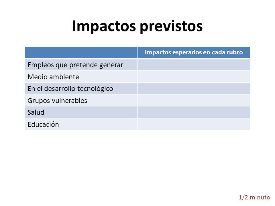 Impactos previstos Impactos esperados en cada rubro Empleos que pretende generar Medio ambiente En el desarrollo tecnológico Grupos vulnerables Salud