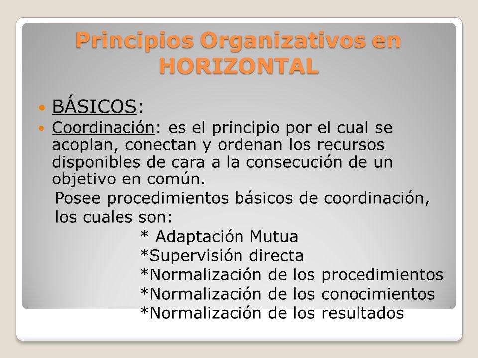 Principios organizativos: también se aplican todos pero se destacan Divisionalización Descentralización Coordinación Normalización de resultados Información Comunicación a todos los niveles