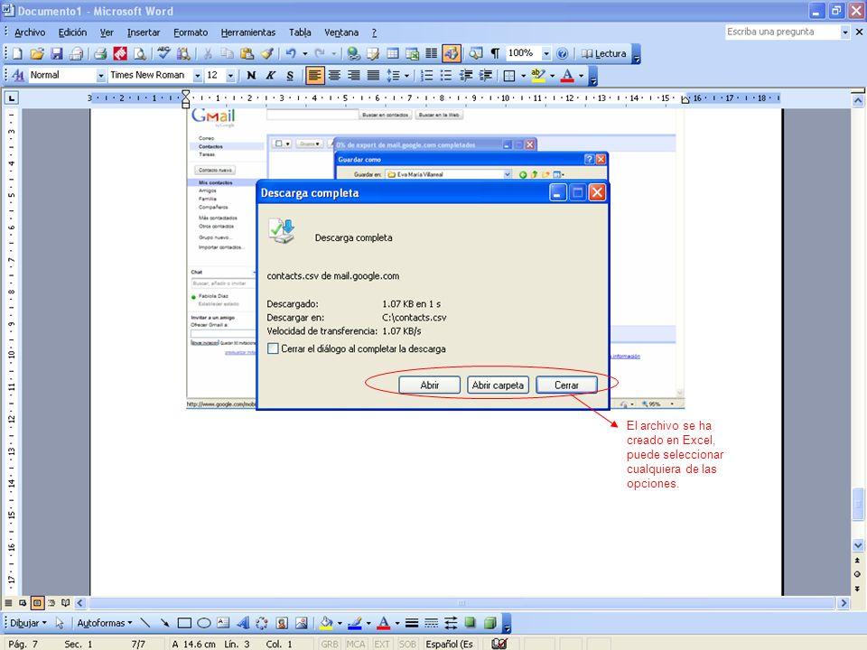 El archivo se ha creado en Excel, puede seleccionar cualquiera de las opciones.