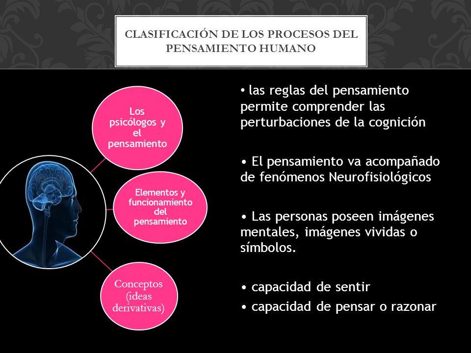 las reglas del pensamiento permite comprender las perturbaciones de la cognición El pensamiento va acompañado de fenómenos Neurofisiológicos Las personas poseen imágenes mentales, imágenes vividas o símbolos.