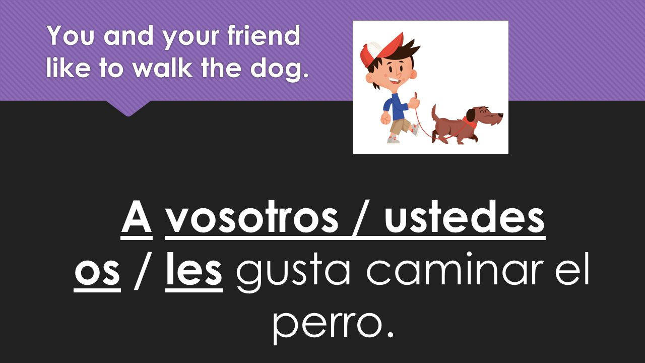 You and your friend like to walk the dog. A vosotros / ustedes os / les gusta caminar el perro.