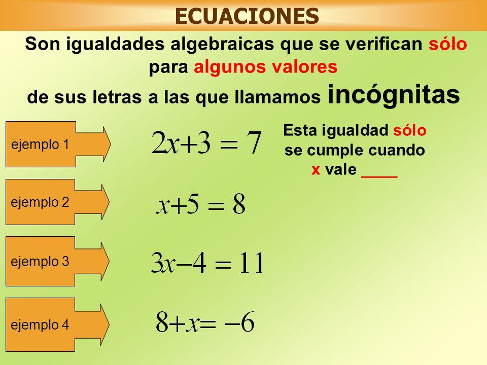 ECUACIONES Son igualdades algebraicas que se verifican sólo para algunos valores de sus letras a las que llamamos incógnitas ejemplo 1 Esta igualdad sólo se cumple cuando x vale ____ ejemplo 2 ejemplo 3 ejemplo 4