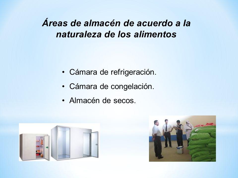 Cámara de refrigeración. Cámara de congelación. Almacén de secos. Áreas de almacén de acuerdo a la naturaleza de los alimentos
