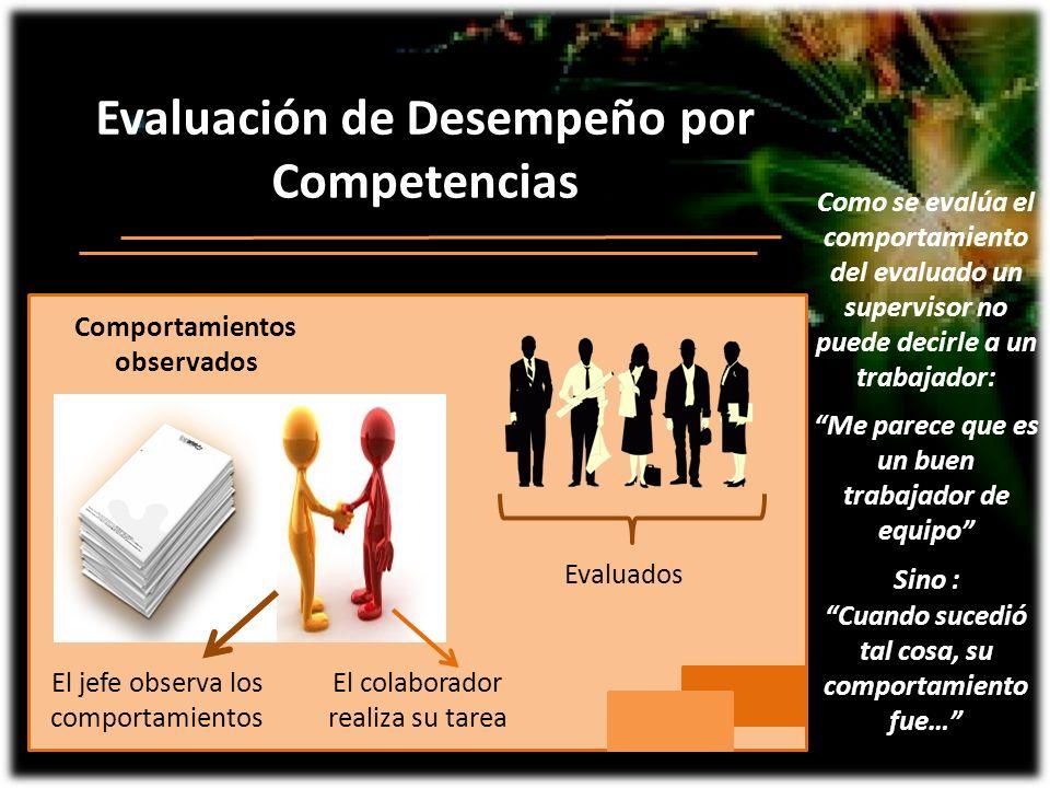 Evaluación de Desempeño por Competencias El colaborador realiza su tarea Comportamientos observados El jefe observa los comportamientos Evaluados Me p