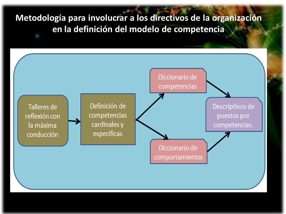 Conformación de un Diccionario de Competencias.