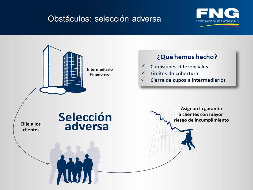 Obstáculos: selección adversa ¿Que hemos hecho.