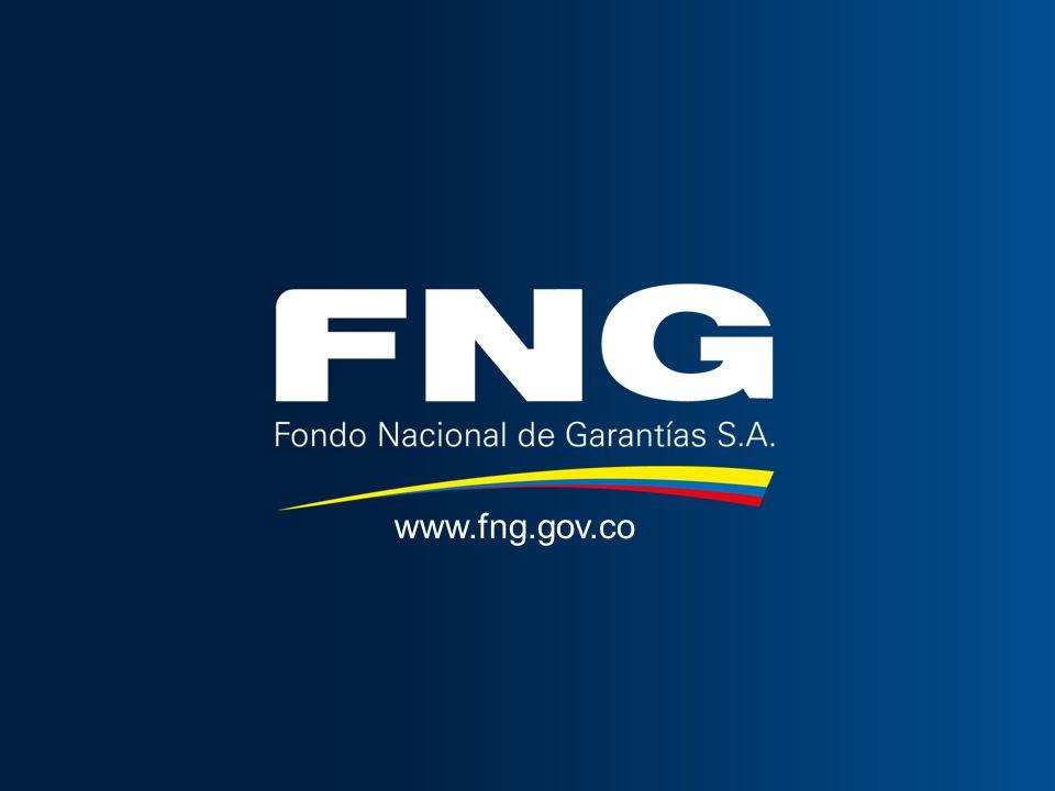 www.fng.gov.co