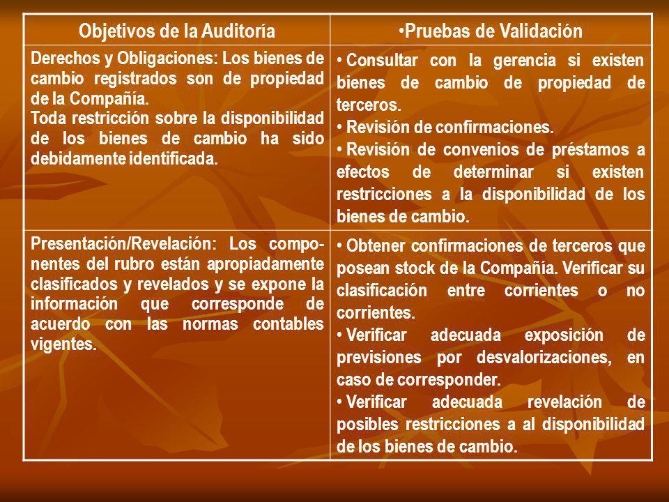 Objetivos de la Auditoría Pruebas de Validación Derechos y Obligaciones: Los bienes de cambio registrados son de propiedad de la Compañía. Toda restri