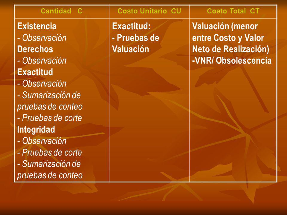 Cantidad CCosto Unitario CUCosto Total CT Existencia - Observación Derechos - Observación Exactitud - Observación - Sumarización de pruebas de conteo