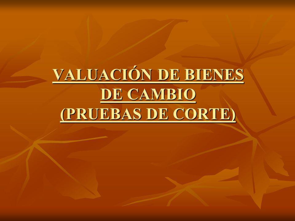 VALUACIÓN DE BIENES DE CAMBIO (PRUEBAS DE CORTE)