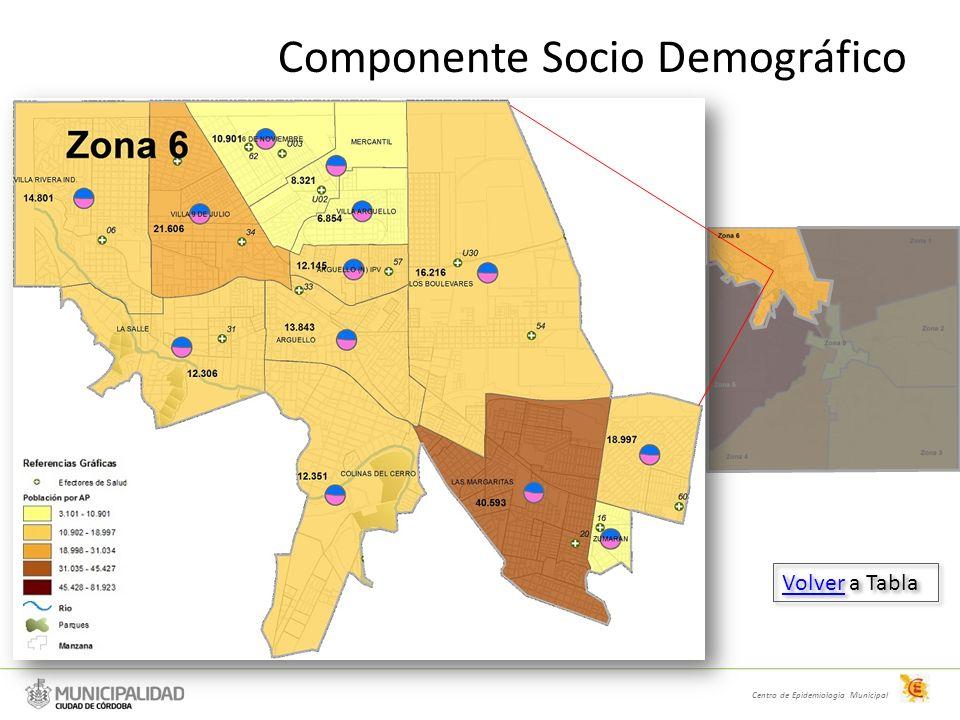 Componente Socio Demográfico Centro de Epidemiologia Municipal VolverVolver a Tabla VolverVolver a Tabla
