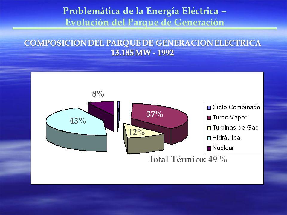 Problemática de la Energía Eléctrica – Evolución del Parque de Generación COMPOSICION DEL PARQUE DE GENERACION ELECTRICA 13.185 MW - 1992 43% 8% 37% 1