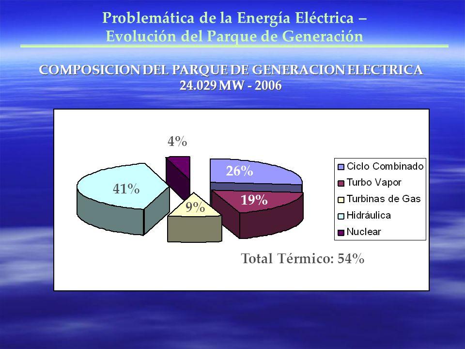 Problemática de la Energía Eléctrica – Evolución del Parque de Generación COMPOSICION DEL PARQUE DE GENERACION ELECTRICA 24.029 MW - 2006 26% 19% 41% 4% Total Térmico: 54% 9%