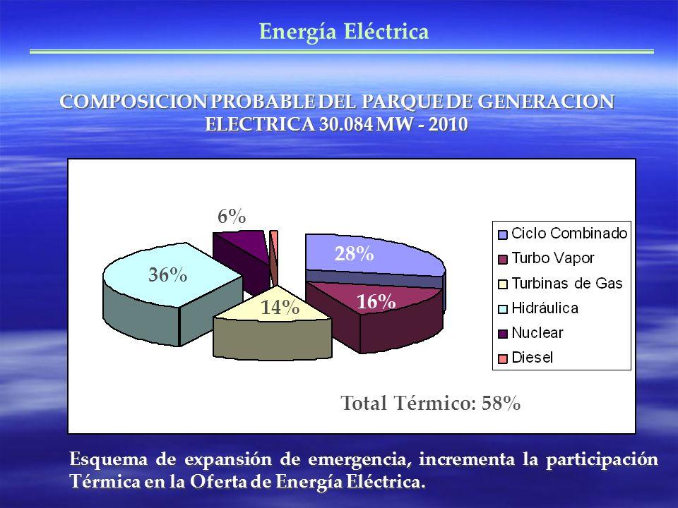 Energía Eléctrica COMPOSICION PROBABLE DEL PARQUE DE GENERACION ELECTRICA 30.084 MW - 2010 36% 6% 28% 16% 14% Total Térmico: 58% Esquema de expansión de emergencia, incrementa la participación Térmica en la Oferta de Energía Eléctrica.