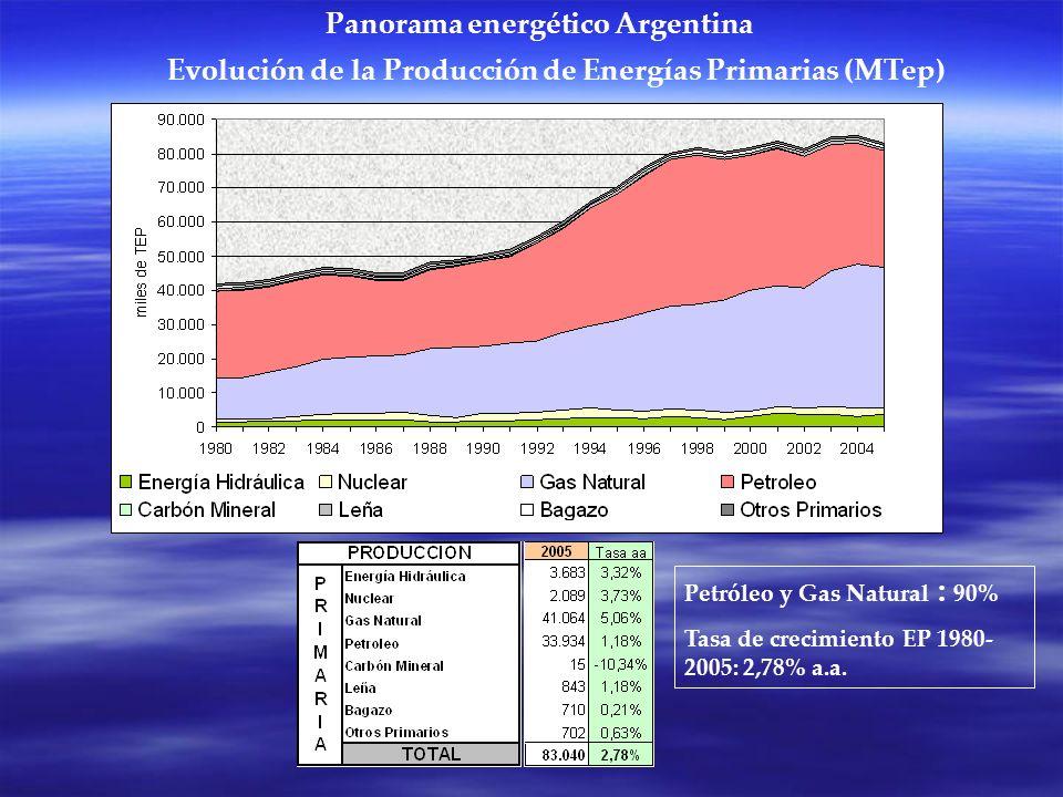 Evolución de la Producción de Energías Primarias (MTep) Petróleo y Gas Natural : 90% Tasa de crecimiento EP 1980- 2005: 2,78% a.a. Panorama energético