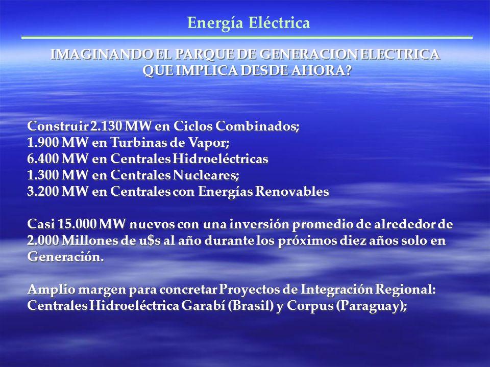 Energía Eléctrica IMAGINANDO EL PARQUE DE GENERACION ELECTRICA QUE IMPLICA DESDE AHORA? Construir 2.130 MW en Ciclos Combinados; 1.900 MW en Turbinas
