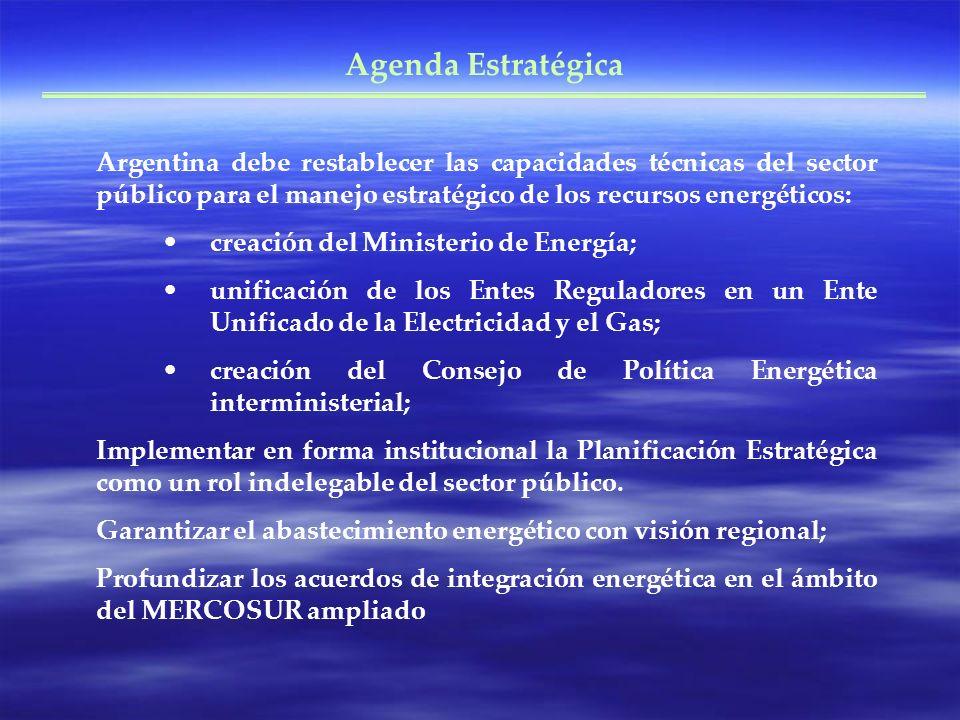 Agenda Estratégica Argentina debe restablecer las capacidades técnicas del sector público para el manejo estratégico de los recursos energéticos: crea
