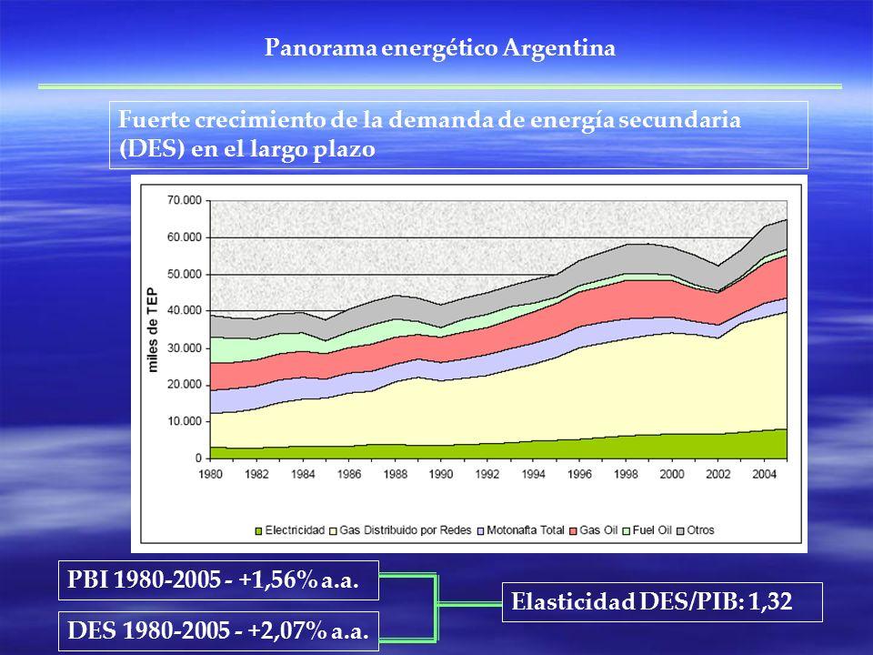 Fuerte crecimiento de la demanda de energía secundaria (DES) en el largo plazo PBI 1980-2005 - +1,56% a.a. DES 1980-2005 - +2,07% a.a. Elasticidad DES