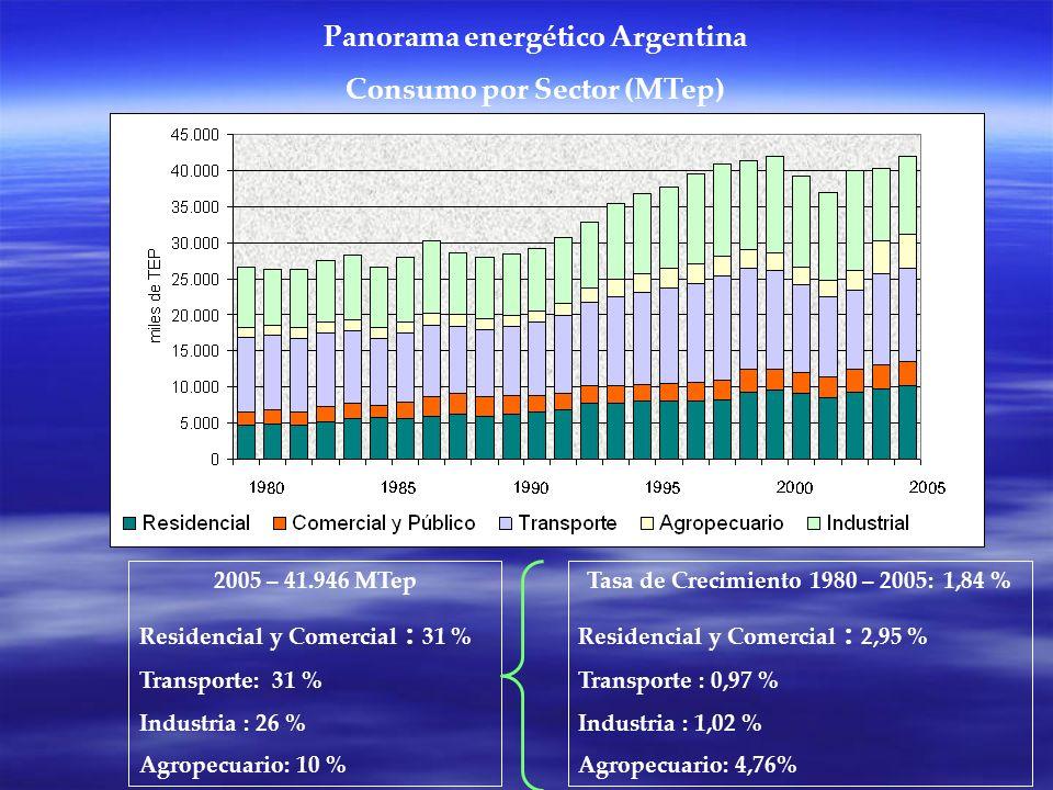 Panorama energético Argentina Consumo por Sector (MTep) 2005 – 41.946 MTep Residencial y Comercial : 31 % Transporte: 31 % Industria : 26 % Agropecuario: 10 % Tasa de Crecimiento 1980 – 2005: 1,84 % Residencial y Comercial : 2,95 % Transporte : 0,97 % Industria : 1,02 % Agropecuario: 4,76%