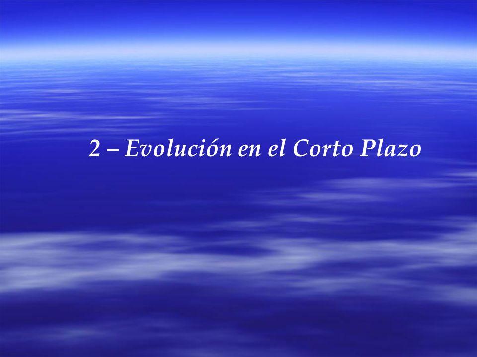 3 – Evolución en el Largo Plazo