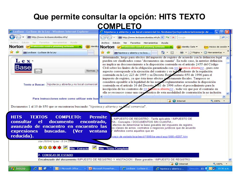 HITS TEXTOS COMPLETO: Permite consultar el documento encontrado, avanzado de encuentro en encuentro las expresiones buscadas. (Ver ventana reducida).