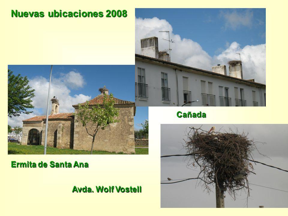 Nuevas ubicaciones 2008 Ermita de Santa Ana Cañada Avda. Wolf Vostell
