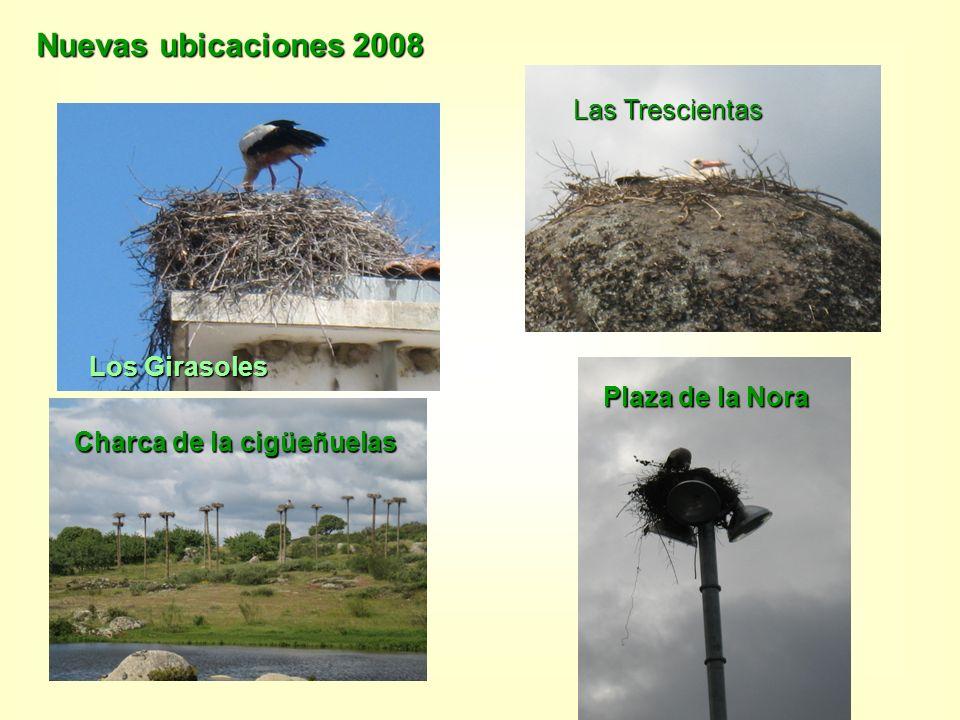 Nuevas ubicaciones 2008 Los Girasoles Charca de la cigüeñuelas Las Trescientas Plaza de la Nora