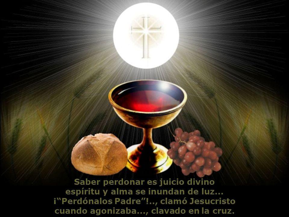 Saber perdonar es juicio divino espíritu y alma se inundan de luz...