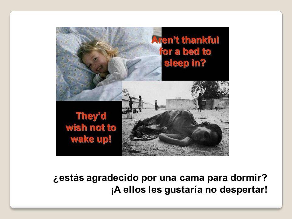 ¿estás agradecido por una cama para dormir? ¡A ellos les gustaría no despertar!