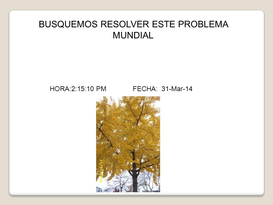BUSQUEMOS RESOLVER ESTE PROBLEMA MUNDIAL HORA:2:16:48 PM FECHA: 31-Mar-14