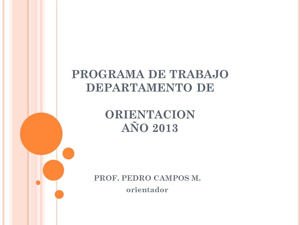 PROGRAMA DE TRABAJO DEPARTAMENTO DE ORIENTACION AÑO 2013 PROF. PEDRO CAMPOS M. orientador