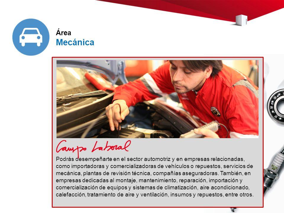 Podrás desempeñarte en el sector automotriz y en empresas relacionadas, como importadoras y comercializadoras de vehículos o repuestos, servicios de mecánica, plantas de revisión técnica, compañías aseguradoras.