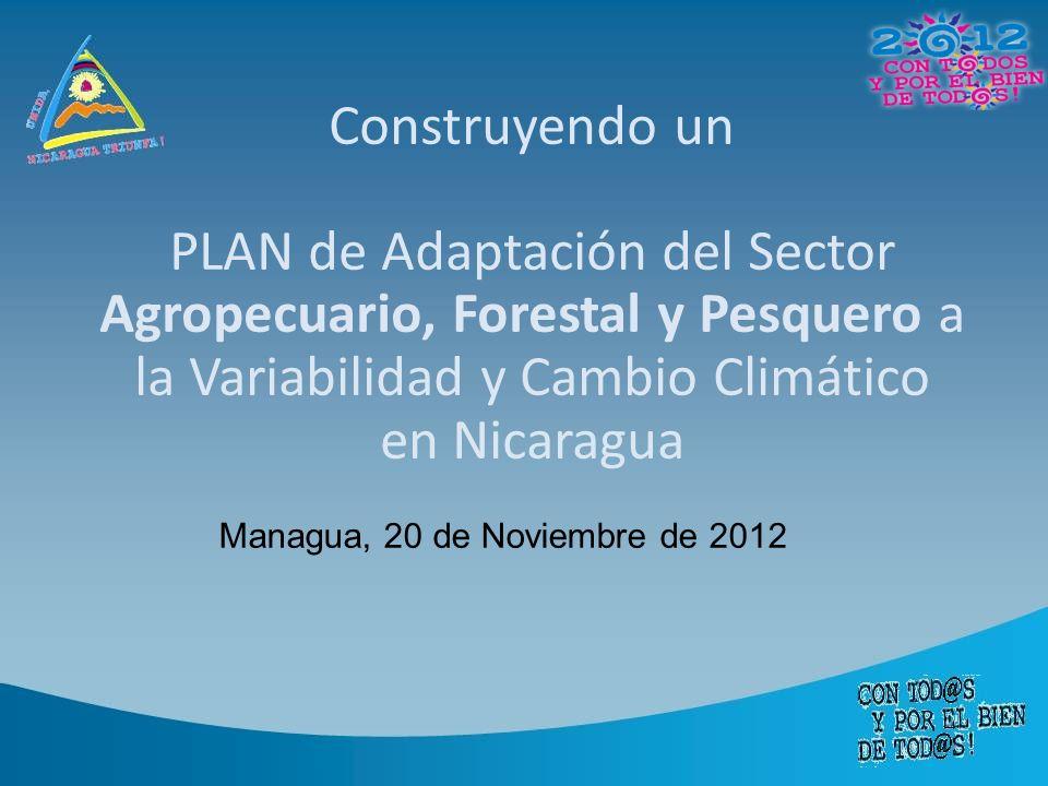 Construyendo un PLAN de Adaptación del Sector Agropecuario, Forestal y Pesquero a la Variabilidad y Cambio Climático en Nicaragua Managua, 20 de Noviembre de 2012