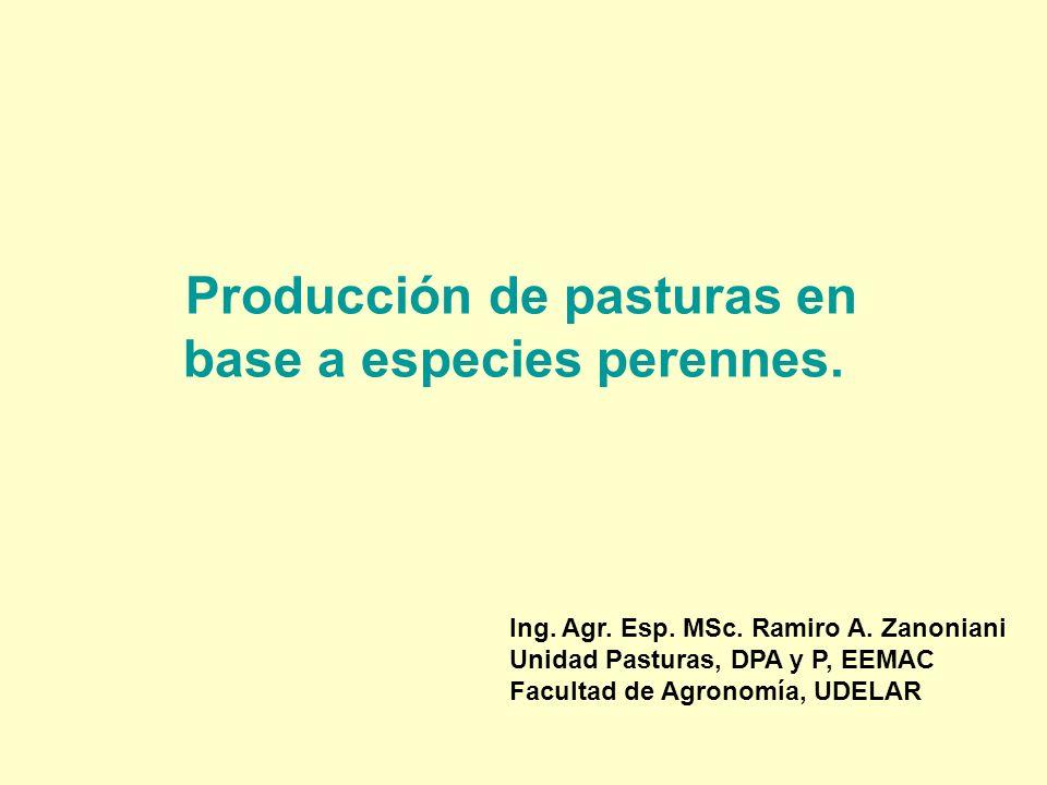 Producción de pasturas en base a especies perennes. Ing. Agr. Esp. MSc. Ramiro A. Zanoniani Unidad Pasturas, DPA y P, EEMAC Facultad de Agronomía, UDE