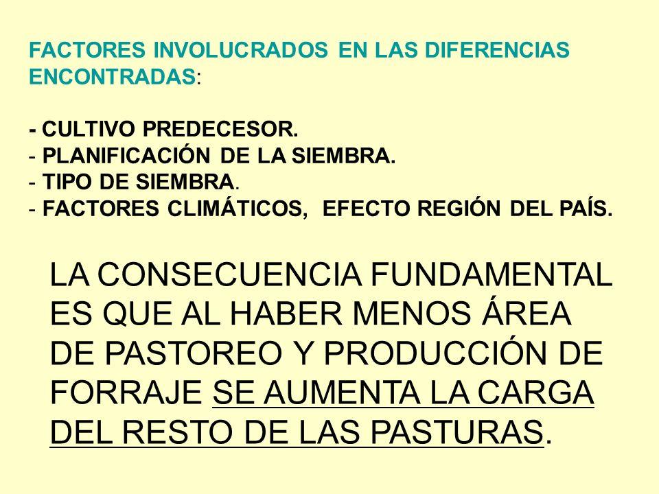 FACTORES INVOLUCRADOS EN LAS DIFERENCIAS ENCONTRADAS: - CULTIVO PREDECESOR.