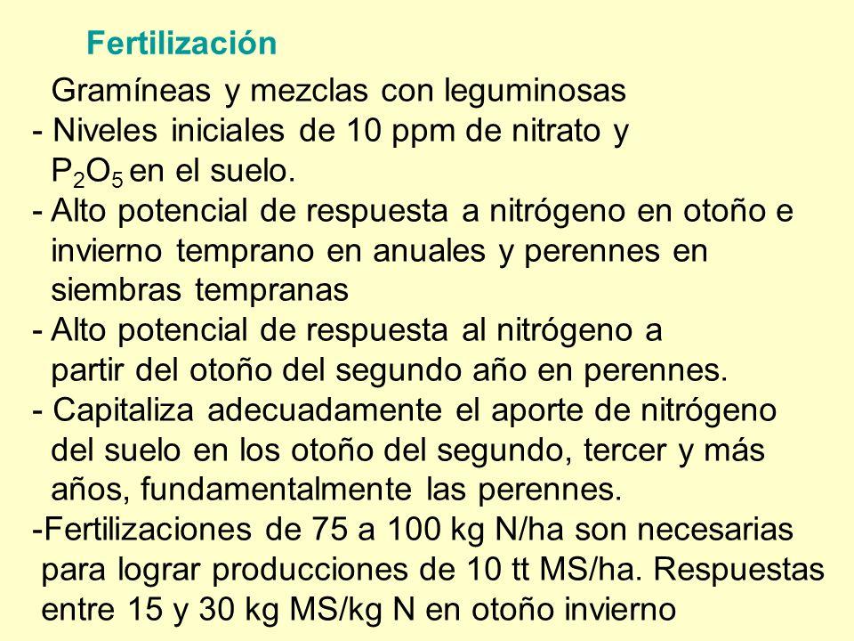Fertilización Gramíneas y mezclas con leguminosas - Niveles iniciales de 10 ppm de nitrato y P 2 O 5 en el suelo. - Alto potencial de respuesta a nitr