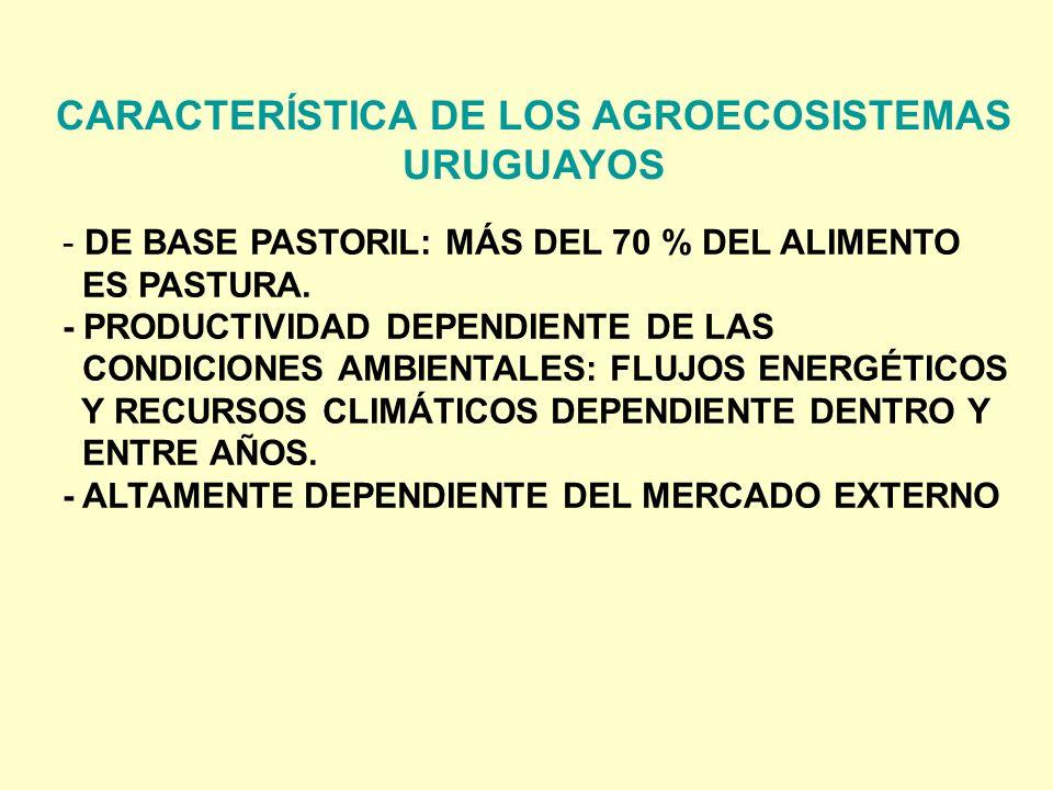 CARACTERÍSTICA DE LOS AGROECOSISTEMAS URUGUAYOS - DE BASE PASTORIL: MÁS DEL 70 % DEL ALIMENTO ES PASTURA. - PRODUCTIVIDAD DEPENDIENTE DE LAS CONDICION